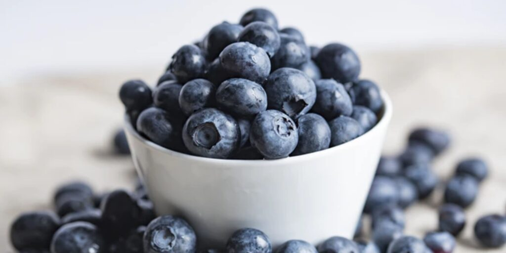 a steady supply of blueberries will help brain aging